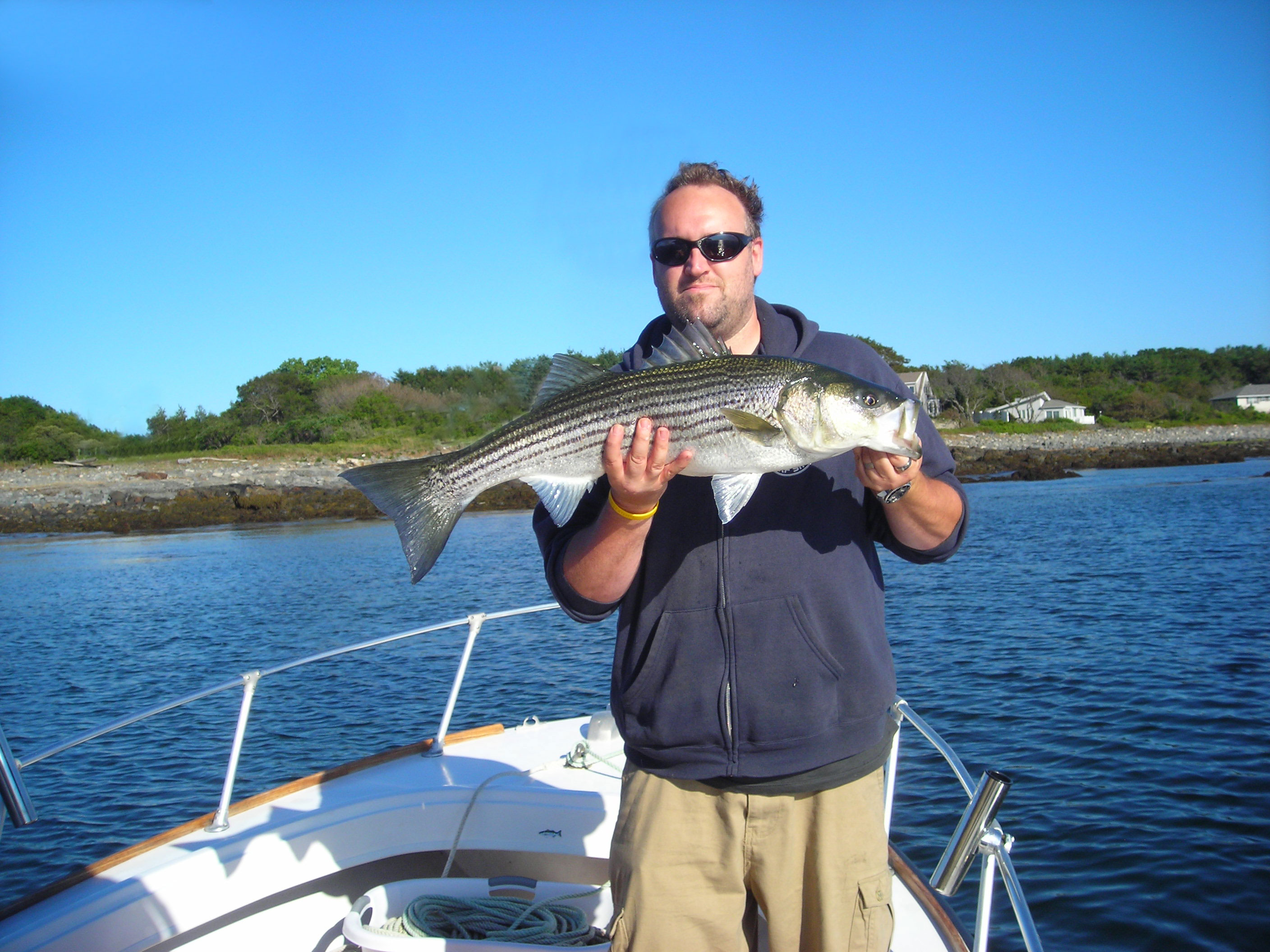Maine saltwater fly fishing and light tackle guides for for Saltwater fishing in maine
